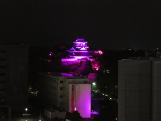 hamamatujo_pink.jpg